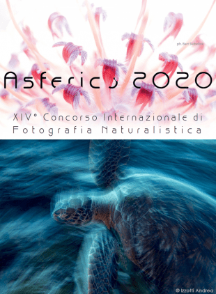 XIV International Nature Photography Competition ASFERICO 2020